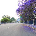 काठमाडौं उपत्यकामा थप १ हप्ता निषेधाज्ञा लम्ब्याउने निर्णय, सवारी साधनमा जोर विजोर प्रणाली