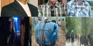 सिमा सिल – गाई , भैसी ,पेट्रोल र डिजलको तस्करी सुचारु